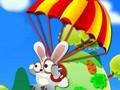 Flying Rabbit