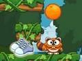 Raccoon Jump